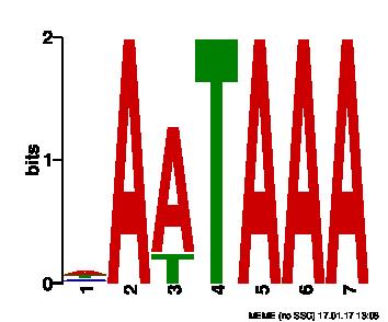logo2.png (7.2 kB)