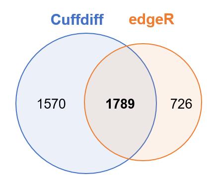 2017-02-08_cuffdiff_vs_edgeR.xlsx - Excel 2017-02-08 20.03.59.png (23.9 kB)