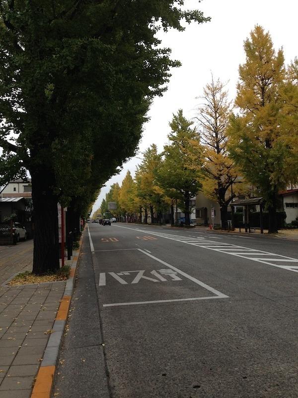 写真 2014-11-08 11 45 13.jpg